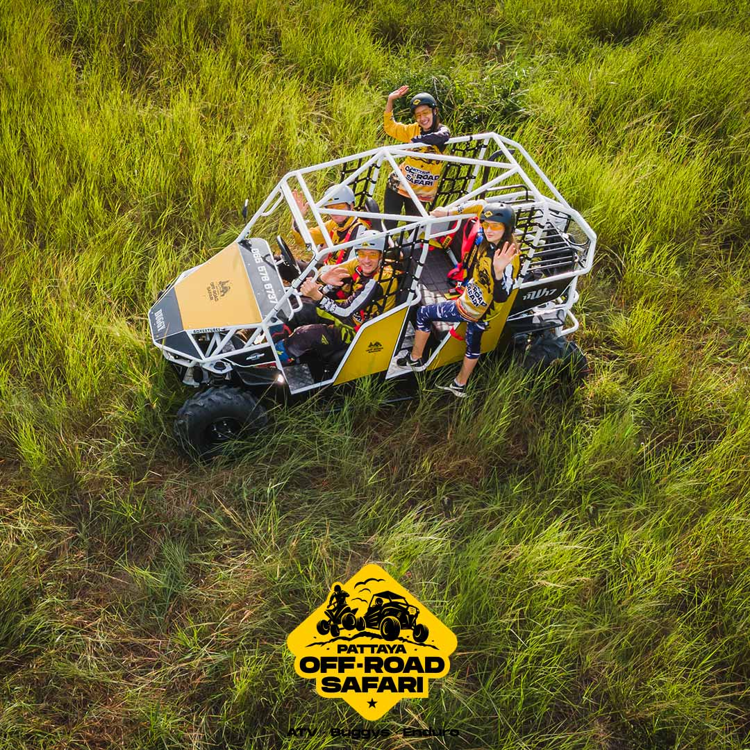 family-buggy-2